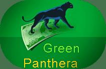 Płatne ankiety internetowe - portal GreenPanthera